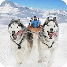 狗狗雪橇竞速游戏