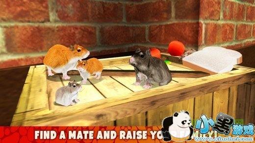 仓鼠模拟器下载