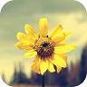 拍照识花(照片识花认草) v1.3.1.5 安卓版