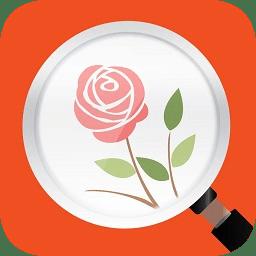 微软识花官方app v1.0 安卓最新版