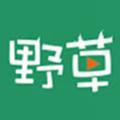 野草视频在线观看免费播放版app