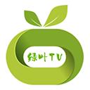 绿叶tv v1.0.4