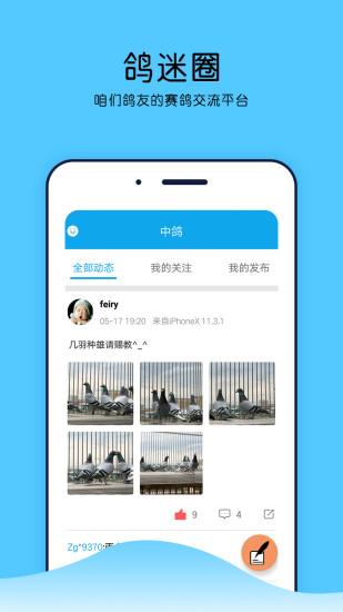 """""""中鸽网app软件下载"""""""